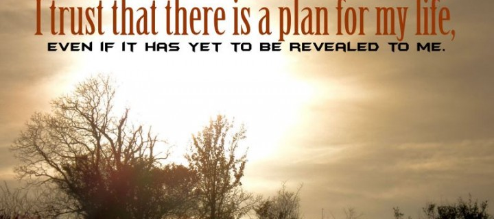 I trust there is a plan for life