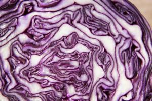 Gut-brain food